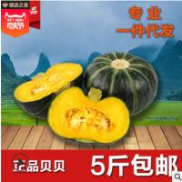 板栗南瓜日本种源真贝贝南瓜5斤包邮宝宝辅食粉糯甜蔬菜小贝贝