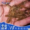 大量批发澳洲淡水龙虾苗 销售幼苗2--6cm虾苗 欢迎质询订购