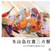 野生红膏三点蟹 红三点蟹母蟹大 红膏螃蟹海蟹海螃蟹梭子蟹
