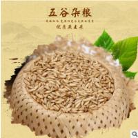 优质燕麦米燕麦仁 杂粮燕麦米批发 五谷杂粮燕麦米袋装49斤