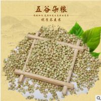 批发荞麦米 绿色健康营养粒大饱满农家自产五谷粗粮三角麦