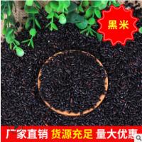 厂家批发量大优惠 散装袋装黑大米 农家自产五谷杂粮黑米黑香米