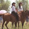 汗血马多少钱一匹 哪里有卖骑乘马的 可以骑乘的半血马多少钱