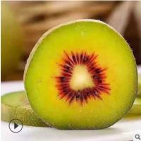 预售江西赣州甜红心猕猴桃新鲜水果猕猴桃奇异果现摘现发产地直销