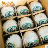 新鲜椰青9个大椰子泰国椰青进出口水果原味多汁热带水果批发