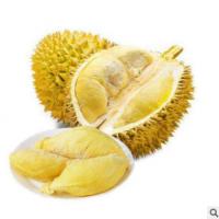 供应新鲜水果泰国金枕榴莲 产地进口榴莲鲜果批发 水果批发商