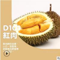 马来西亚液氮榴莲D101 批发进口冷冻水果小猫山王榴莲熟果供应