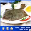 产地比目鱼供应全国多宝鱼海鱼鲽鱼大菱鲆 鱼类批发