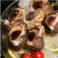 常年供应新鲜大海螺 冷冻水产酒店烧烤海鲜食材 厂家直销
