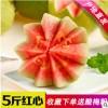 广西番石榴5斤红心芭乐新鲜应季热带水果农家特产支持一件代发
