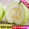广西白心番石榴10斤新鲜白心芭乐应季水果支持一件代发