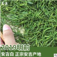 明前安吉白茶 2019新茶安吉白茶 高档特制 正宗安吉产地 厂家供应