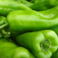 供应新鲜蔬菜青椒