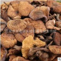 野生榛蘑东北特产新货干货500克无根蘑菇榛蘑丁不好包退一件代发