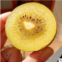 现货5斤大果四川蒲江黄心猕猴桃 金艳奇异果新鲜水果代发水果礼