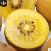现货多规格四川蒲江黄心猕猴桃 金艳奇异新鲜水果代发水果礼盒装