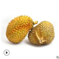 泰国金枕头榴莲现货 进口水果 榴莲 新鲜 猫山王金枕榴莲一件代发
