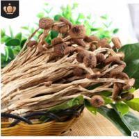 古田茶树菇 产地量大批发 南北干货 食用菌 不开伞茶树菇 250克