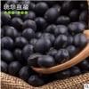 农家自产黑豆粗粮五谷杂粮绿芯黑豆绿心新豆黑豆量大从优