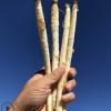 原产地内蒙古赤峰沙参干沙参条参类滋补品批发农产品土特产北沙参