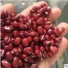 农安红红豆可商检可出口5.5mm大颗粒抛光出口级高标准红小豆