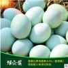 厂家直销 绿壳种蛋受精蛋孵化蛋散养绿壳乌鸡蛋五黑一绿鸡苗