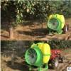 大容量风送打药机 拖拉机后置悬挂式风送弥雾机 果园弥雾机