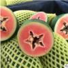 果园直供海南新鲜水果青皮木瓜 冰糖红心木瓜3斤/5斤装包邮