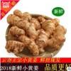 农家种植云南新鲜小黄姜生态月子姜 一件代发小黄姜8斤净重装一件