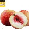 5斤约30个高山冰糖雪桃小冬桃子非水蜜桃新鲜水果包邮一件代发