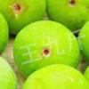 产地直销美味新鲜现摘青皮无花果 3斤装批发新鲜水果种植果园直发