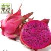 广西金都一号红心火龙果5斤中大果红肉火龙果新鲜水果批发代发