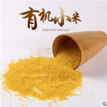 朝阳特产有机小米农家自产五谷杂粮黄小米袋装细粮
