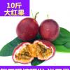 广西百香果新鲜现摘先发10斤装大红果百香鸡蛋果西番莲包邮