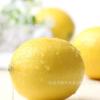 黄柠檬尤力克新鲜水果批发柠檬榨汁泡茶冷饮1/3/5斤中果产地货源
