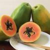 红心木瓜9斤装冰糖青皮孕妇新鲜木瓜 广西水果一件代发红肉木瓜