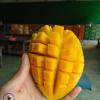 当季新鲜水果一件代发包邮芒果 越南甜心芒8斤 青皮芒金煌芒批发