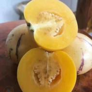 云南人参果应季新鲜水果黄肉圆果包邮一件代发低糖生鲜水果人参果