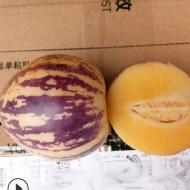 人参果 人生果5斤新鲜水果云南石林人参果圆果花果长寿果