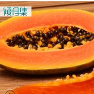 广东湛江雷州红心木瓜8斤 新鲜水果冰糖心牛奶木瓜青木瓜一件代发