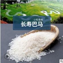铭朝丰品牌长寿巴马小粒香米15kg装农家特产大米餐饮生鲜厂家直批