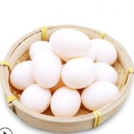 养殖基地直供新鲜鸽子蛋五谷杂粮喂养30枚包邮支持一件代发鸽子蛋