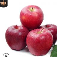甘肃天水花牛苹果 新鲜水果香甜脆口天水花牛蛇果5/8/10斤