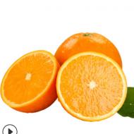 江西赣南脐橙5斤 赣州脐橙香甜多汁 新鲜水果当季纽荷尔橙子