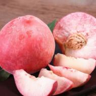 预售湖北水蜜桃新鲜孕妇水果毛桃当季春雪蜜硬桃桃子甜血桃多汁