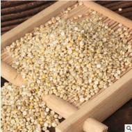 批发零售五台山藜麦优质藜麦米厂家源头量大优惠宝宝辅食米