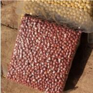 山西旱地 无化肥无农药 农家自种红小豆 赤小豆 女人小红豆1kg