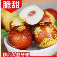 正宗陕西大荔冬枣新鲜水果脆甜枣子孕妇小孩鲜枣5斤非沾化冬枣