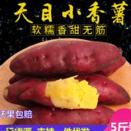 临安天目山小香薯新鲜农家番薯黄心红薯板栗薯山芋地瓜5斤包邮