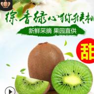 江山徐香猕猴桃绿心奇异果当季水果 大果带箱5斤装一件代发江浙沪